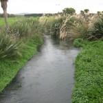 Waikakahi Stream